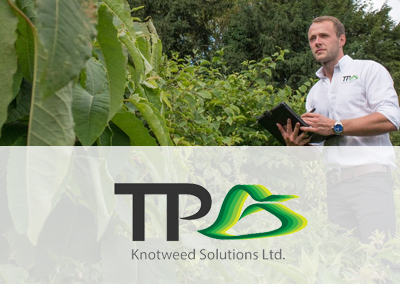TP Knotweed Solutions